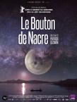 LE BOUTON DE NACRE