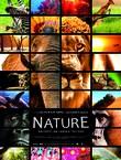 NATURE EN 3D