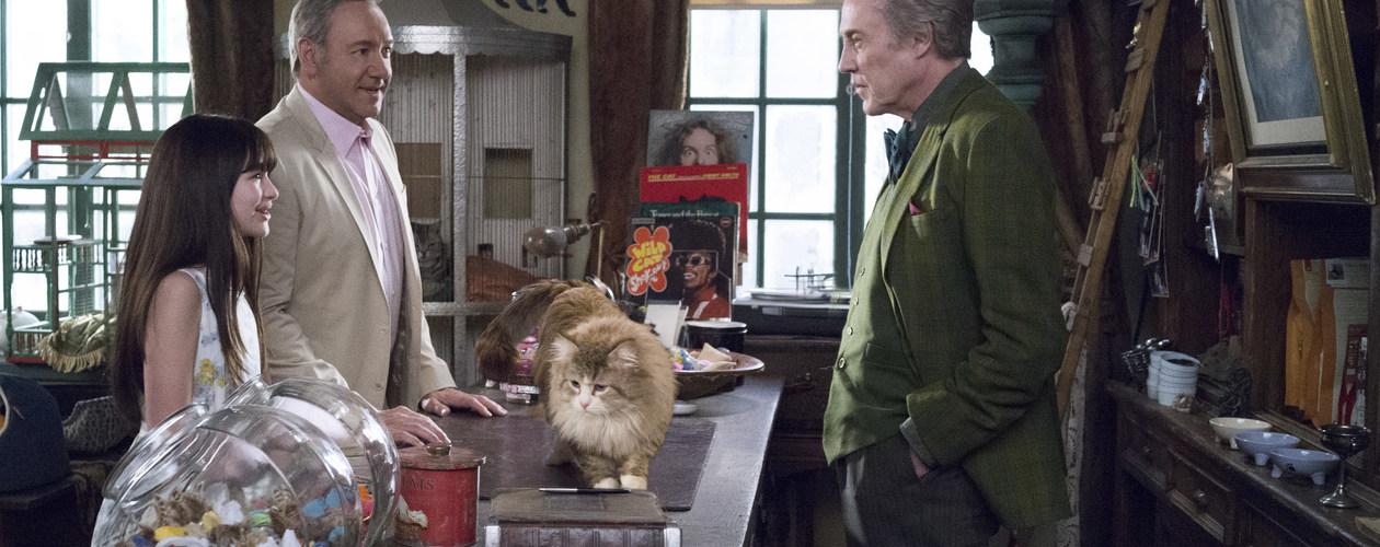 Photo du film Ma vie de chat