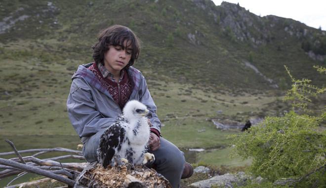 Photo du film L' Aigle et l'Enfant
