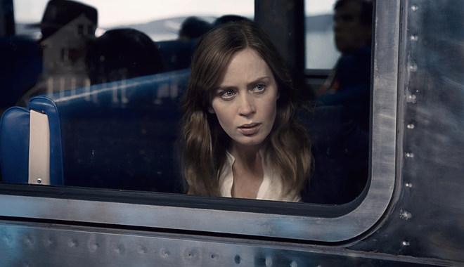 Photo du film La Fille du train