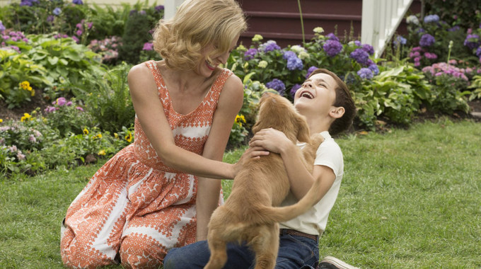 Photo du film Mes vies de chien