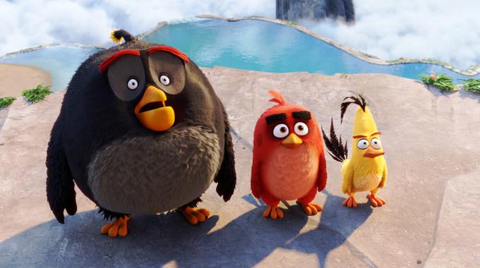 Photo du film Angry Birds en 3D