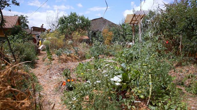 Photo SLIDE pour L'éveil de la permaculture