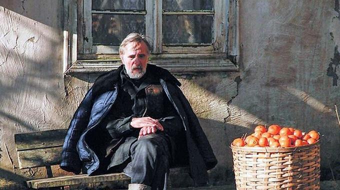 Photo SLIDE pour Mandarines