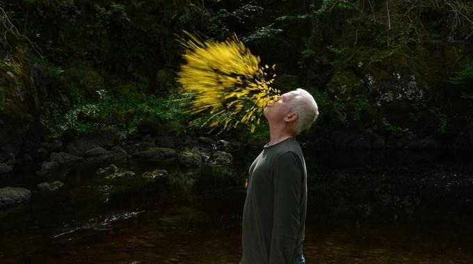 Photo du film Penché dans le vent