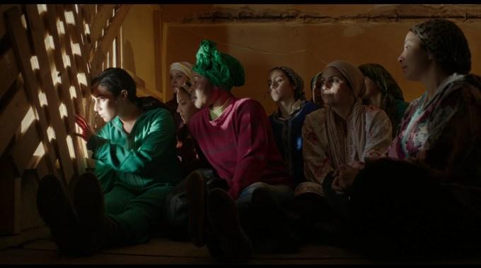 Photo du film Volubilis