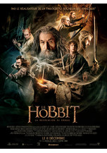 LE HOBBIT LA DESOLATION DE SMAUG