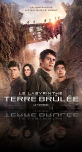 LE LABYRINTHE : LA TERRE BRULEE
