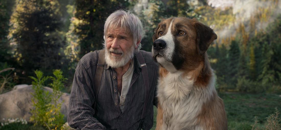 Photo du film L'Appel de la forêt
