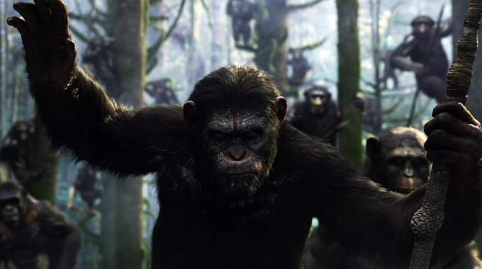 Photo SLIDE pour LA PLANETE DES SINGES : L'AFFRONTEMENT