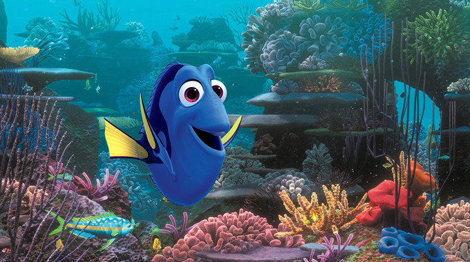 Photo SLIDE pour Le Monde de Dory