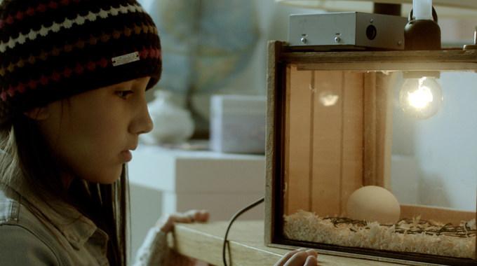 Photo du film Les Oiseaux de passage