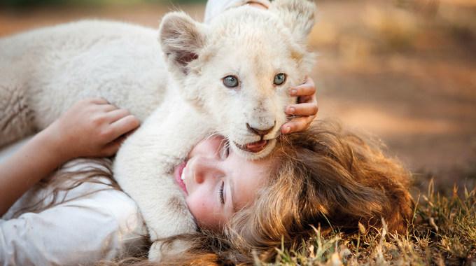 Photo du film Mia et le Lion Blanc