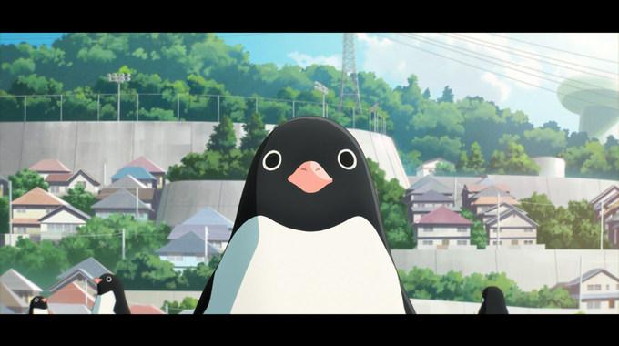 Photo du film Le Mystère des pingouins