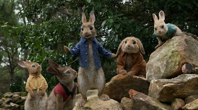 Photo du film Pierre Lapin