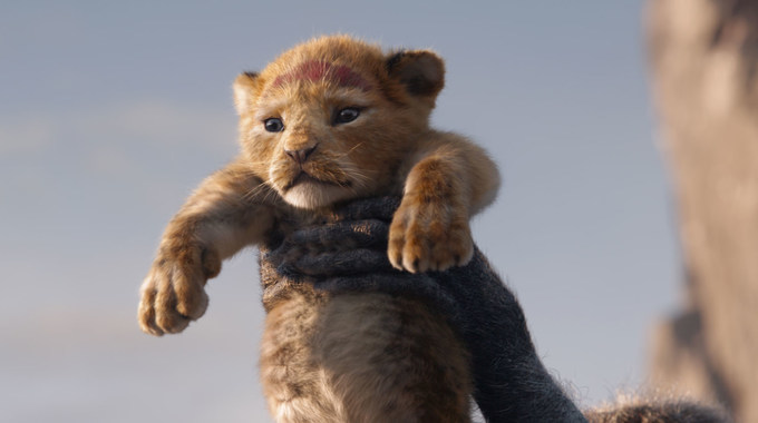 Photo du film Le Roi Lion